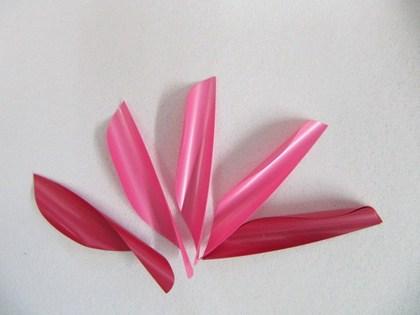 S.W.V. Pink.JPG
